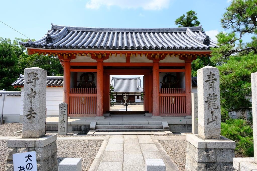 野中寺の山門