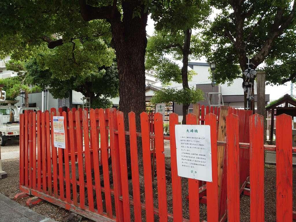 鶴見神社の自然
