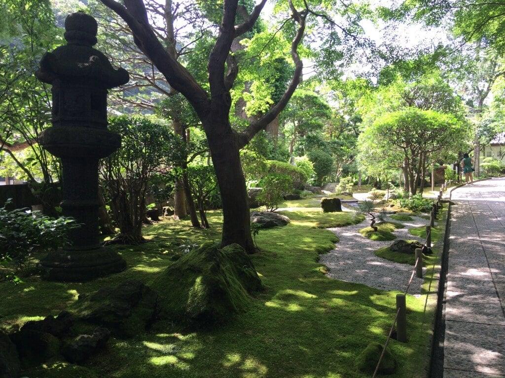 報国寺の庭園