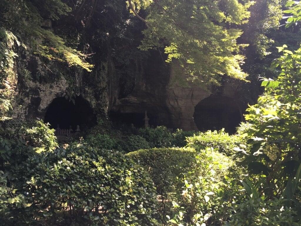 報国寺のお墓