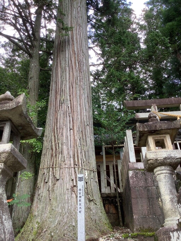 田瀬神社の自然