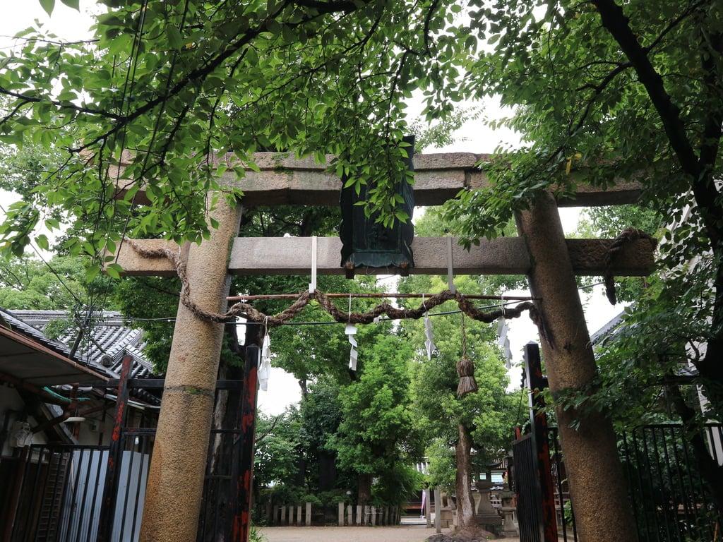 式内楯原神社の鳥居