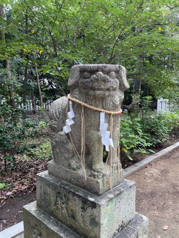辛國神社の狛犬