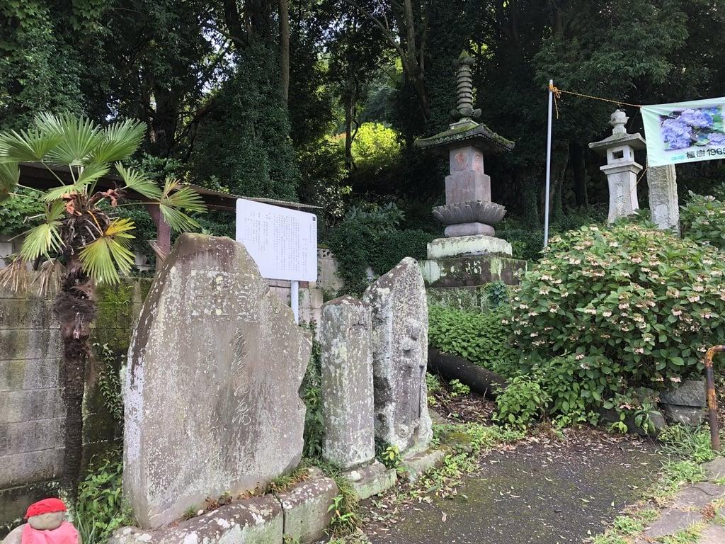 達磨寺(群馬県)